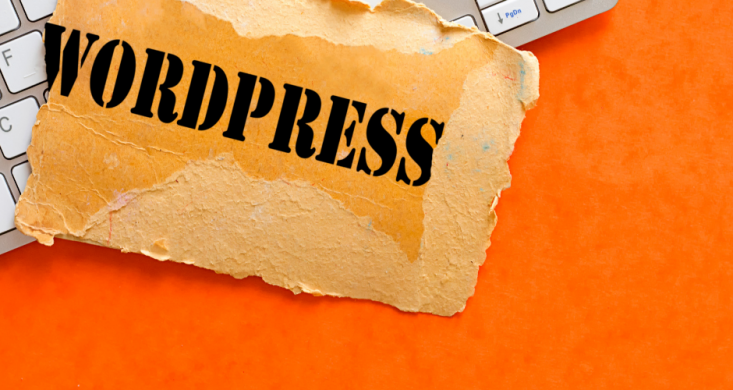 What Is Wordpress.com About
